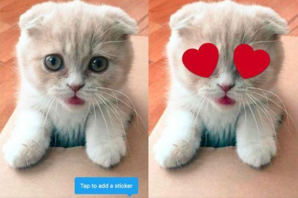 Twitter розробляє функцію редагування фотографій – ЗМІ