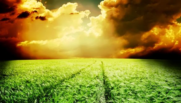 Чому зміна клімату є медіаполтергейстом?