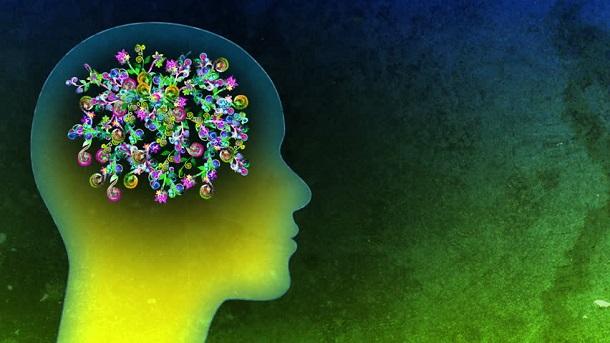 Пропагандистское воздействие: на чужие мозги и на свой мозг