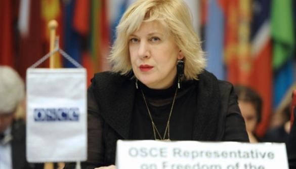 Дуня Міятович закликає парламент Чехії скасувати кримінальну відповідальність за наклеп на президента