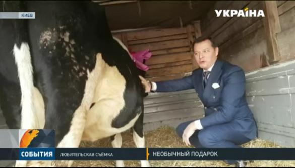 Телеканал «Україна» розповів про корову, «собачок» та «котиків» Ляшка