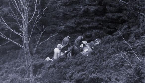 Норвезькі журналісти пролили світло на вбивство, яке поліція не змогла розкрити за півсторіччя