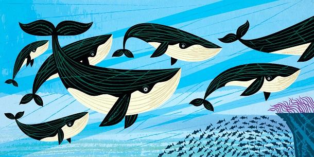 Дружба «акул» та «китів»: як ГО співпрацювати зі ЗМІ