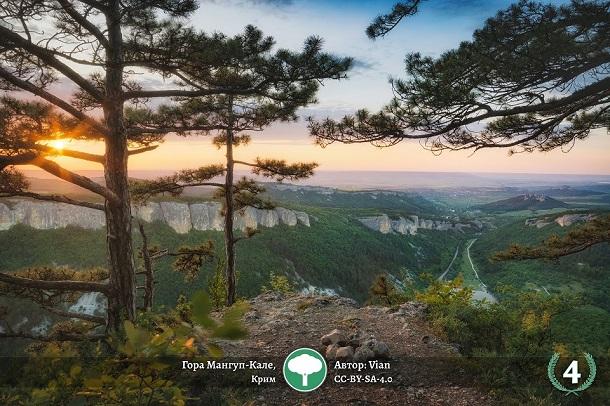 «Вікімедіа Україна» показала кращі знімки фотоконкурсу пам'яток природи України