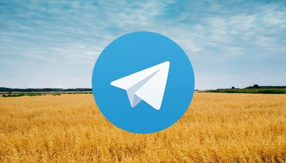 Як живе український Telegram: факти про користувачів та їхні канали
