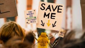 Французькі вчені завели акаунт бджоли-інфлюенсера в Instagram