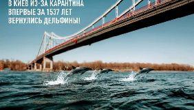 Кубань «повернулася» до складу України: кращі меми про оновлення природи під час карантину