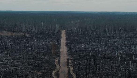 Подивіться, як виглядає Чорнобильська зона після пожеж (ВІДЕО)