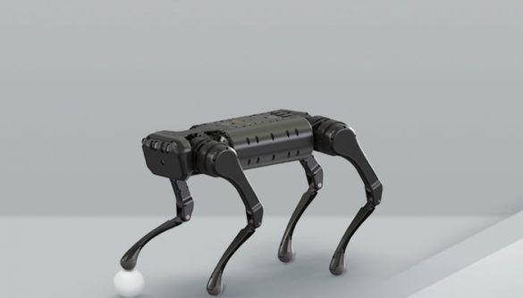 Новий робот-собака швидко бігає, крутить сальто та конфліктує з собі подібними (ВІДЕО)