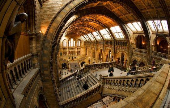 ЮНЕСКО: Кожен восьмий музей у світі через пандемію  може закритися назавжди