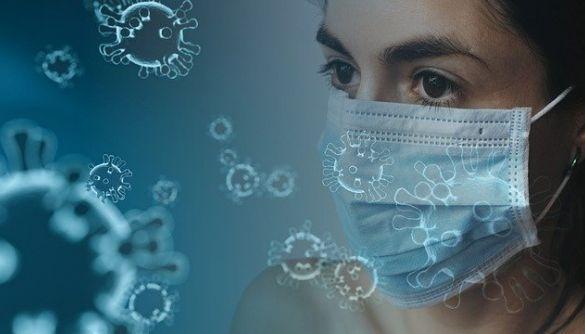 Вчені припускають, що у боротьбі з COVID-19 може допомогти відвар жимолості
