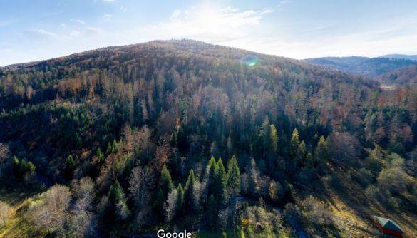 Google разом з Міндовкілля оцифрували 10 національних парків України