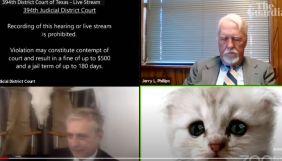 Адвокат виступив на судовому засіданні у вигляді кота – не зміг відключити фільтр в Zoom