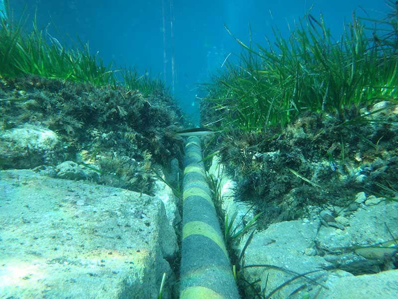 Для покращення інтернет-зв'язку Faсebook прокладе два кабелі у Тихому океані