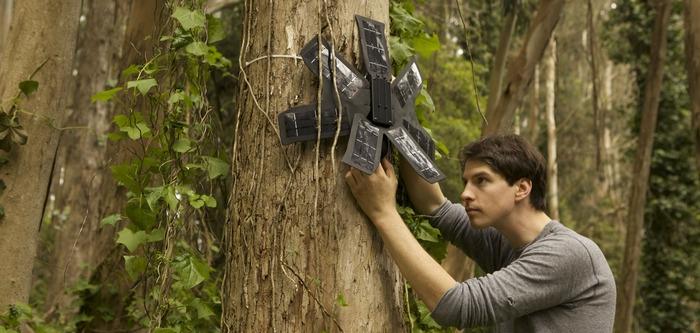 Rainforest Connection використовує старі смартфони для захисту лісів від вирубування