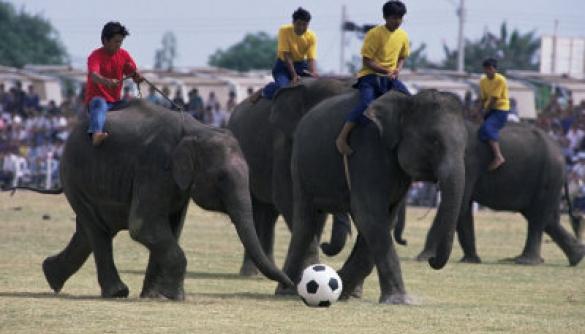 Тайська військова хунта наказала забезпечити фанів безкоштовним показом чемпіонату світу з футболу